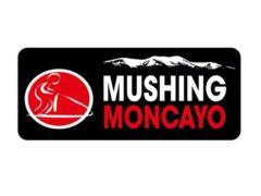 Mushing Moncayo