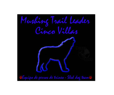 Mushing Trail Leader Cinco Villas