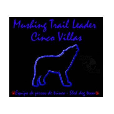 MUSHING TRAIL LEADER CINCO VILLAS - Fadi