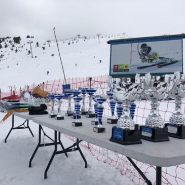 Candanchú ha acogido este fin de semana losCampeonatos de Aragón U16/U14de esquí alpino'Memorial Nines y Armando'.